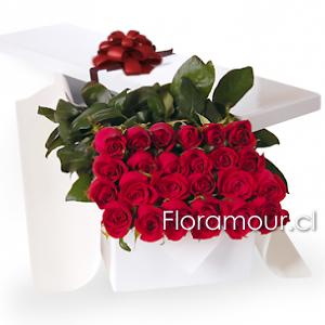 Caja De Rosas De Lujo Con 24 Rosas Ecuatorianas