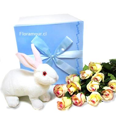 Caja De Rosas Con Conejo De Peluche