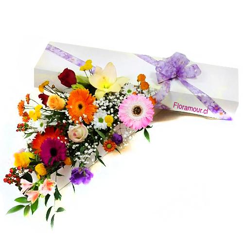 Caja De Flores Fiesta Primaveral