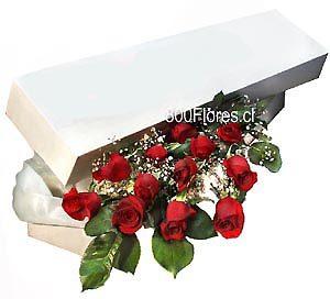 Caja Con 12 Rosas Importadas De Ecuador